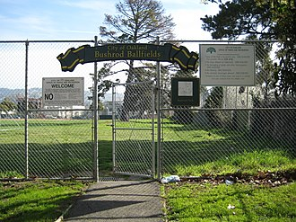 Bushrod Park, Oakland, California - Bushrod Ballfields