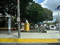 Busto de Miguel Hidalgo en el Parque Chuburná en Mérida, Yucatán (01).jpg