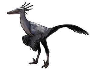 Byronosaurus - Restoration