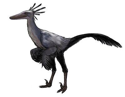 Byronosaurus.jpg