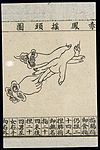 C20 Chinese medical illustration in trad. style; Hand massage Wellcome L0039660.jpg