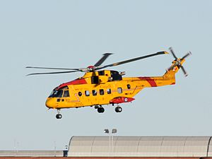 442 Transport and Rescue Squadron - Image: CA Fcormorant YQR (cropped)