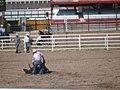 CFD Tie-down roping Tyler Prcin -2.jpg