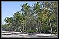 Cairns Clifton Beach Beach Shadows 2011-3 (6288256350).jpg