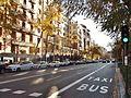 Calle de Miguel Ángel.JPG