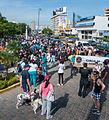 Caminata por los perros y animales Maracaibo 2012 (54).jpg