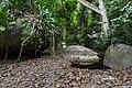 Camino a Pueblito Parque Tayrona.jpg