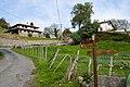 Camino de acceso al barrio Etxeguen en Aramiona - panoramio.jpg