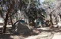 Campement près d'Homeb (Namibie) (2).jpg