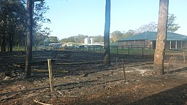 Campvale homes 20131020.jpg