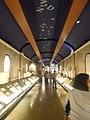 Capitoline Museum Underground Gallery (5987198536).jpg