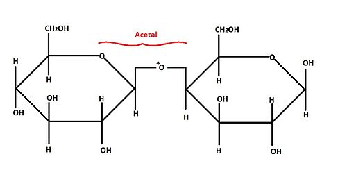 structural biochemistry  carbohydrates  aldoses