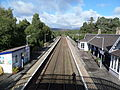 Carrbridge railway station, looking towards Inverness.JPG