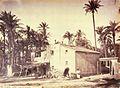 Casa de l'horta, Elx, 1870, Laurent.jpg