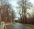 Castlemilk Park - geograph.org.uk - 717456.jpg