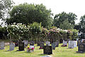 Cemetery rose trellis and graves at Theydon Bois, Essex, England 03.JPG