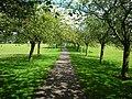 Cherry Tree Walk - geograph.org.uk - 510485.jpg