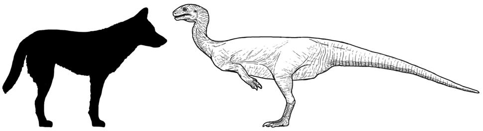 Chilesaurus diagram