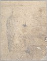 Christ on the Mount of Olives (recto); Study of a Cypress (verso) MET DP826993.jpg