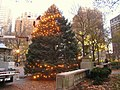 Christmas tree in Rittenhouse Square - IMG 7511.JPG
