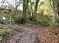 Climbing towards Wyck Farm - geograph.org.uk - 623546.jpg