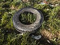 Close-up of a truck tire dumped illegally (51136925841).jpg