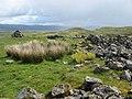 Cnoc na Sroine - geograph.org.uk - 447811.jpg
