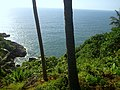 Cola, Goa, India - panoramio (4).jpg