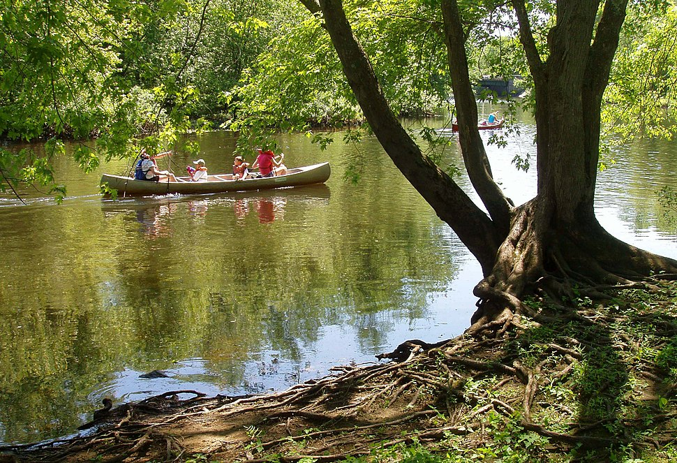 Concord River with canoes, July 2005