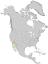 Condalia globosa range map 0.png