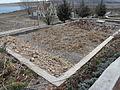 Constructed wetland (6809831492).jpg