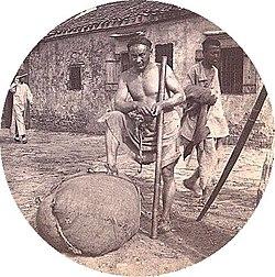 Asian Planter 88