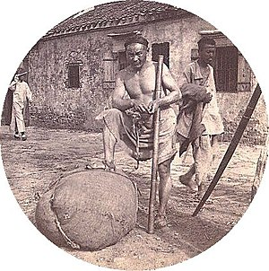 Coolie - Coolie labourer in Zhenjiang, China, with bamboo pole to hoist and carry heavy loads.C. 1900