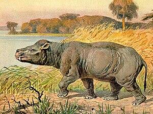 1845 in paleontology - Coryphodon