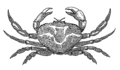 Crab (PSF).png