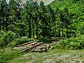 Crni Drim River 93.jpg
