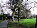Croydon, Trees in Wandle Park - geograph.org.uk - 1776223.jpg