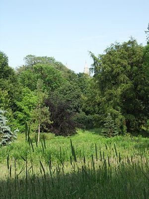 Cruickshank Botanic Garden - Image: Cruickshank arboretum st machars