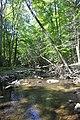 Cunningham Falls State Park - Big Hunting Creek.JPG