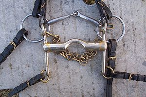 "Double bridle - A ""bit and bradoon"" (curb and snaffle), the two bits of the double bridle"
