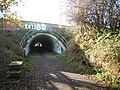 Cycleway under the A1 - geograph.org.uk - 1562775.jpg