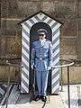 Czech-2013-Prague-Sentry at Prague Castle.jpg