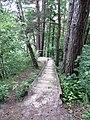 Dūkštų sen., Lithuania - panoramio (103).jpg