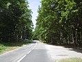 D 72 entre La Celle les Bordes et Clairefontaine.jpg