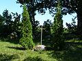 Dauksiai.kapines2 2011.c.JPG