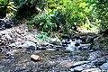 Ddm 2004 034 Shanping Natural Area Kaohsiung.jpg
