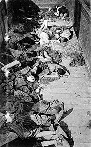 Dead corpses in train dachau