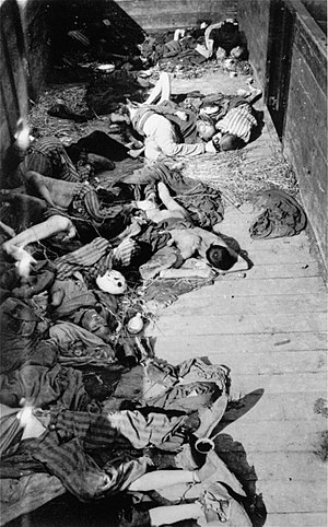 Dachau liberation reprisals - Corpses of internees who were left by their Nazi guards to die in train at Dachau. Thousands of prisoners were murdered by the Nazis in the days before the camp's liberation.