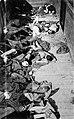 Dead corpses in train dachau.jpg