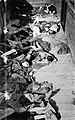 Dead corpses in train dachau.jpg